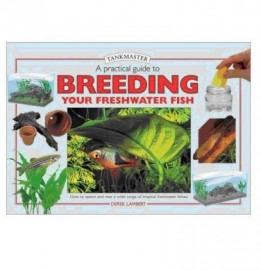 A Practical Guide To Breeding Your Freshwater Fish